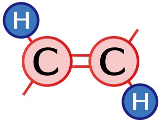 trans型 水素(H)が反対側にある